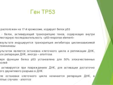 Ген TP53 Ген расположен на 17-й хромосоме, кодирует белок p53 p53 - белок, ак...