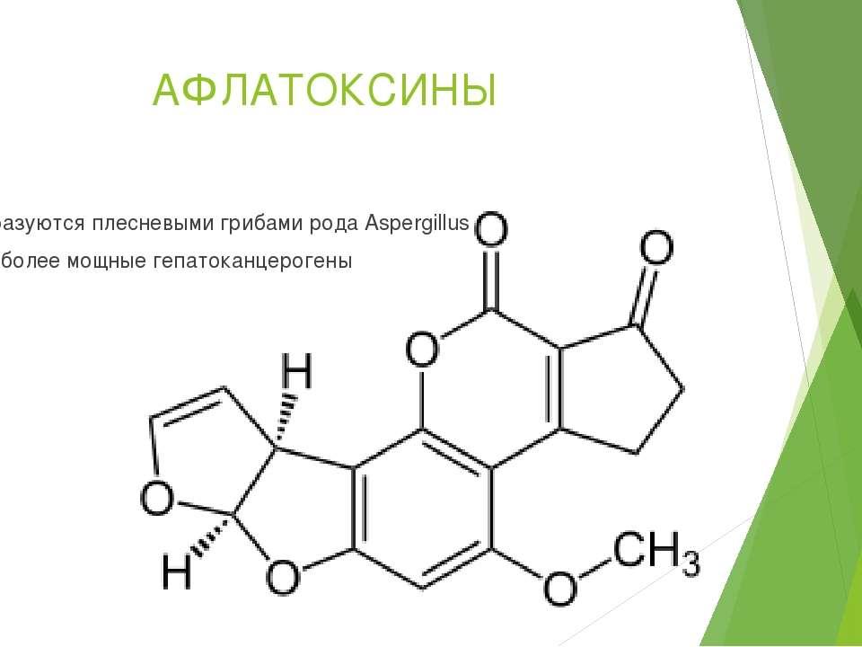АФЛАТОКСИНЫ Образуются плесневыми грибами рода Aspergillus Наиболее мощные ге...
