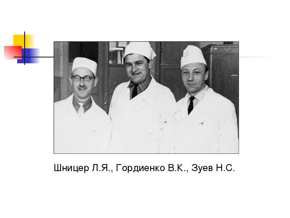 Шницер Л.Я., Гордиенко В.К., Зуев Н.С.