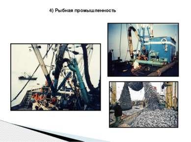 4) Рыбная промышленность