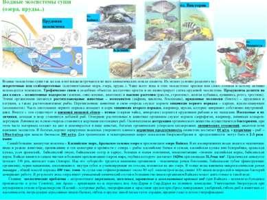 Водные экосистемы суши так же как и ветленды встречаются во всех климатически...