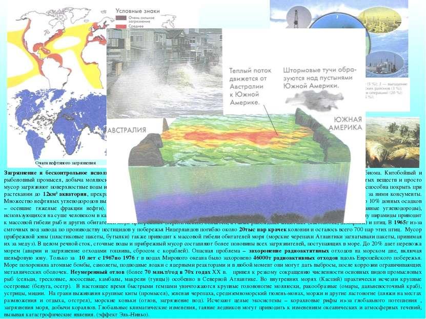 Загрязнение и бесконтрольное использование ресурсов морей и океанов поставило...