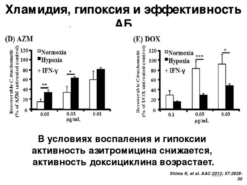 Хламидия, гипоксия и эффективность АБ Shima K, et al. AAC 2013; 57:2828-30 В ...