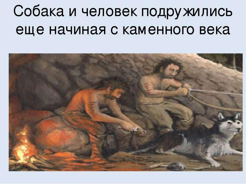 Собака и человек подружились еще начиная с каменного века