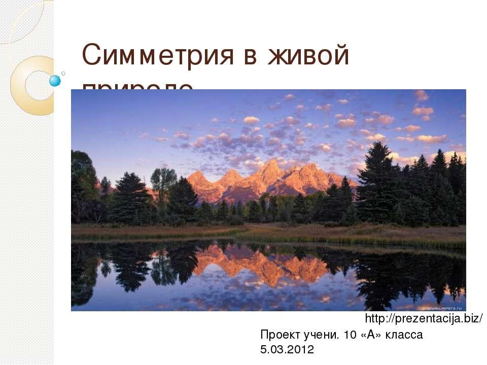 Симметрия в живой природе Проект учени. 10 «А» класса 5.03.2012 http://prezen...