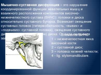 Мышечно-суставная дисфункция – это нарушение координированной функции жевател...