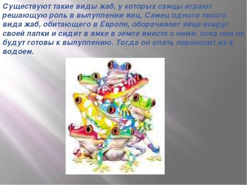 Существуют такие виды жаб, у которых самцы играют решающую роль в вылуплении ...