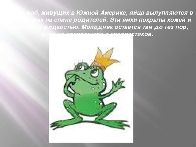 А вот у жаб, живущих в Южной Америке, яйца вылупляются в углублениях на спине...