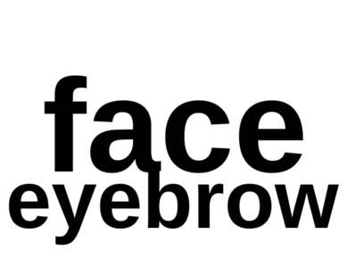 face eyebrow