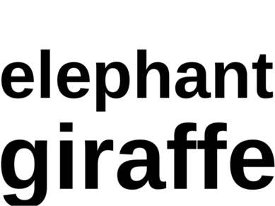 elephant giraffe