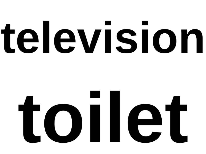 television toilet