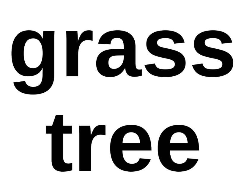grass tree