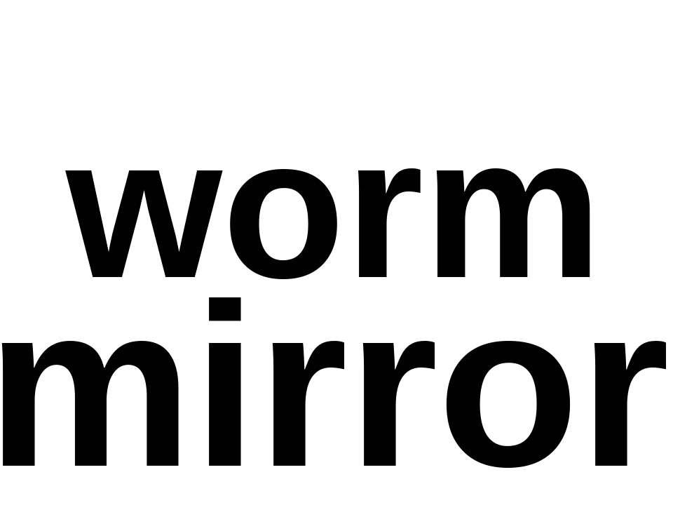 worm mirror