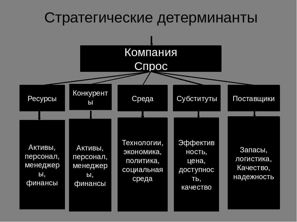 Стратегические детерминанты Компания Спрос Конкуренты Ресурсы Среда Субститут...