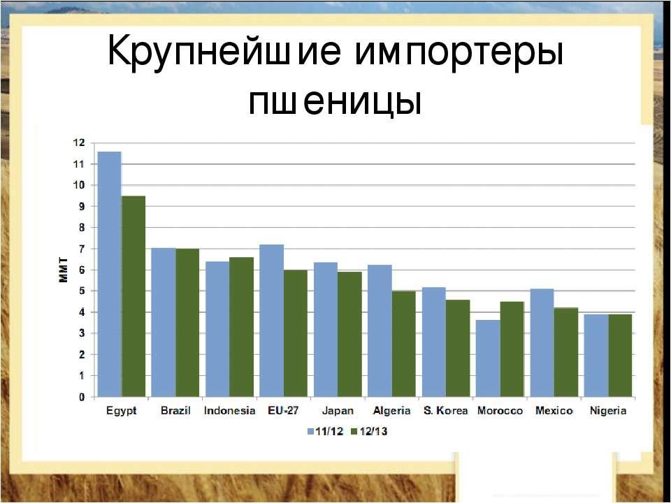 Крупнейшие импортеры пшеницы