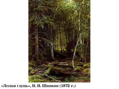 «Лесная глушь», И. И. Шишкин (1872 г.)