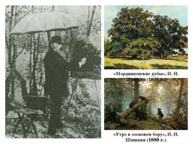 «Мордвиновские дубы», И. И. Шишкин (1891 г.) «Утро в сосновом бору», И. И. Ши...