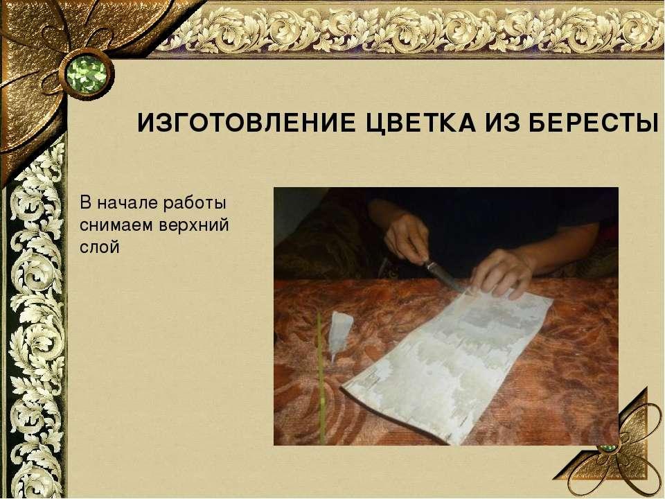 ИЗГОТОВЛЕНИЕ ЦВЕТКА ИЗ БЕРЕСТЫ В начале работы снимаем верхний слой