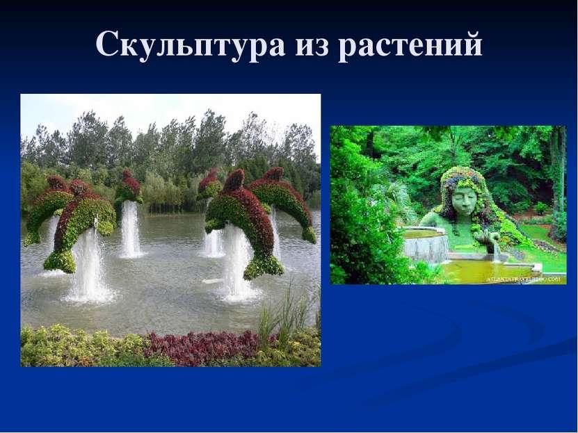 Скульптура из растений