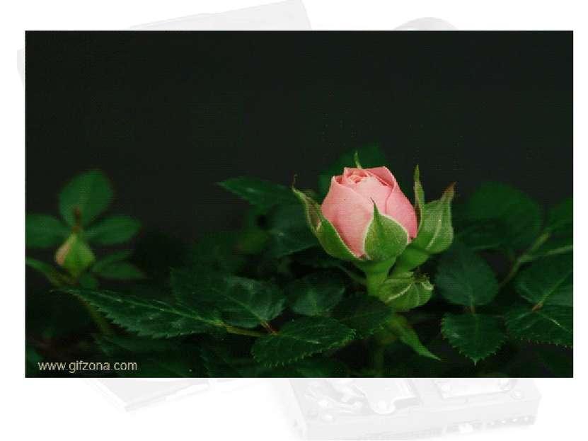 Adobe Photoshop - профессиональный пакет обработки фотографий. Поддерживает р...