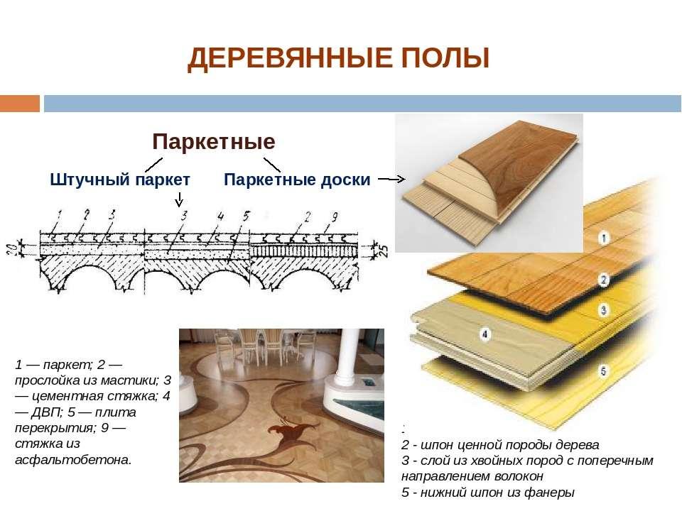 1 - несколько слоев лака 2 - шпон ценной породы дерева 3 - слой из хвойных по...