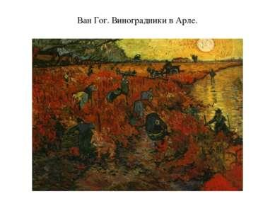 Ван Гог. Виноградники в Арле.