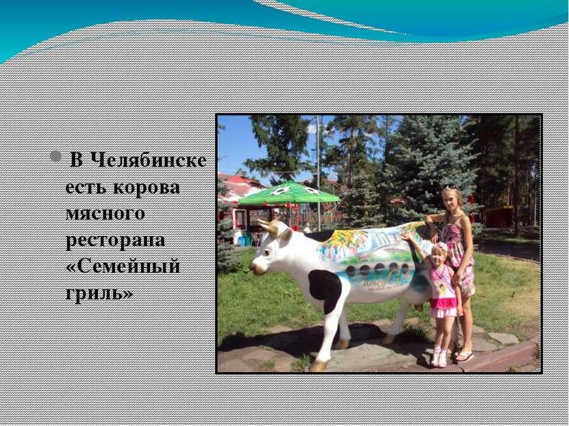 В Челябинске есть корова мясного ресторана «Семейный гриль»