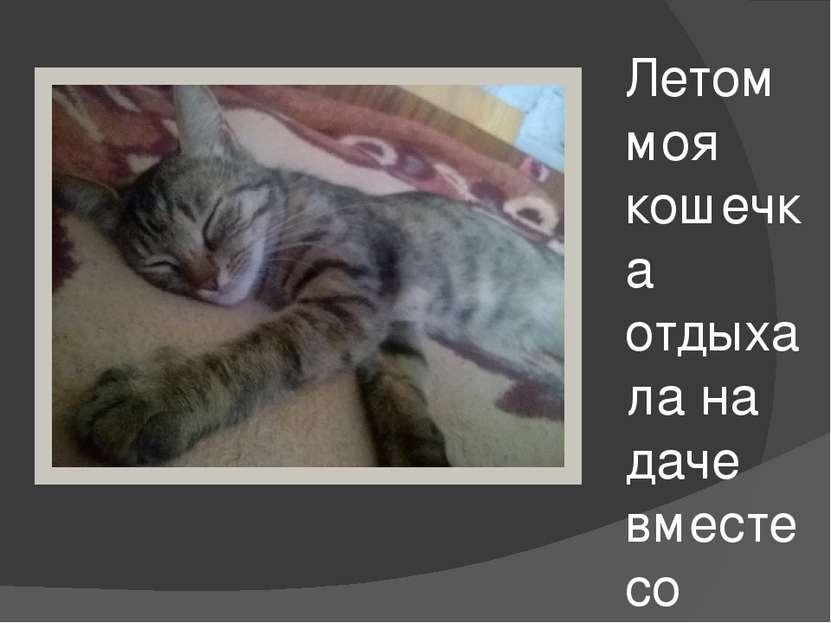 Летом моя кошечка отдыхала на даче вместе со мной))))))))))))