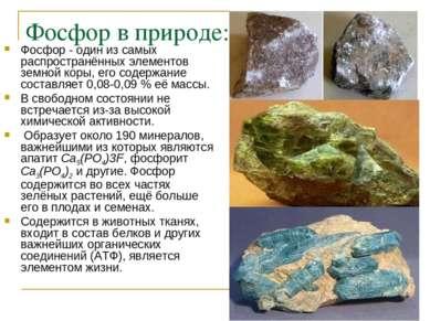 Фосфор в природе: Фосфор - один из самых распространённых элементов земной ко...