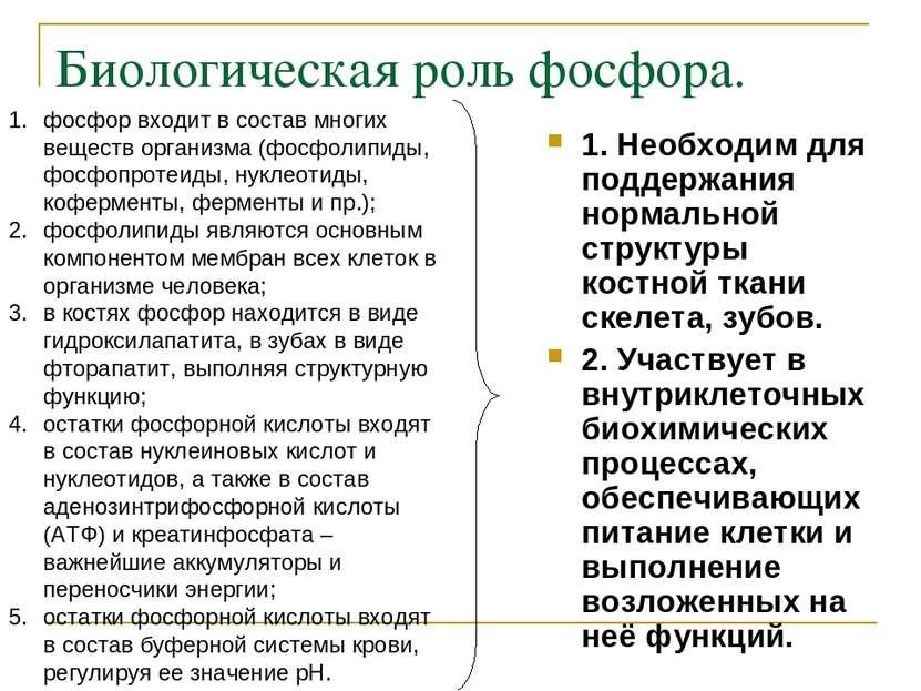 Биологическая роль фосфора. 1. Необходим для поддержания нормальной структуры...