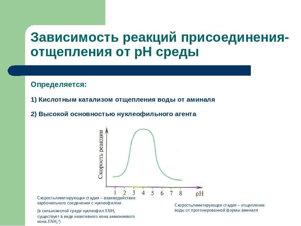Зависимость реакций присоединения-отщепления от рН среды Определяется: 1) Кис...
