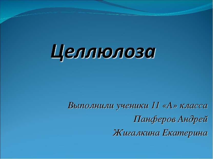 Выполнили ученики 11 «А» класса Панферов Андрей Жигалкина Екатерина