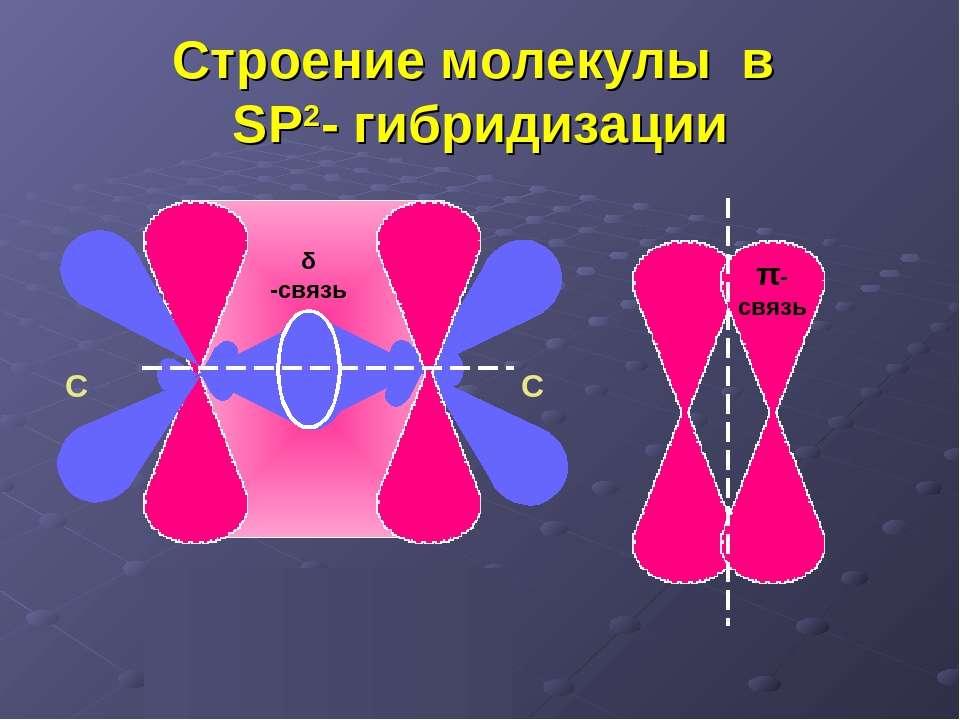 Строение молекулы в SP2- гибридизации δ -связь π-связь С С С = С δ π С = С δ π