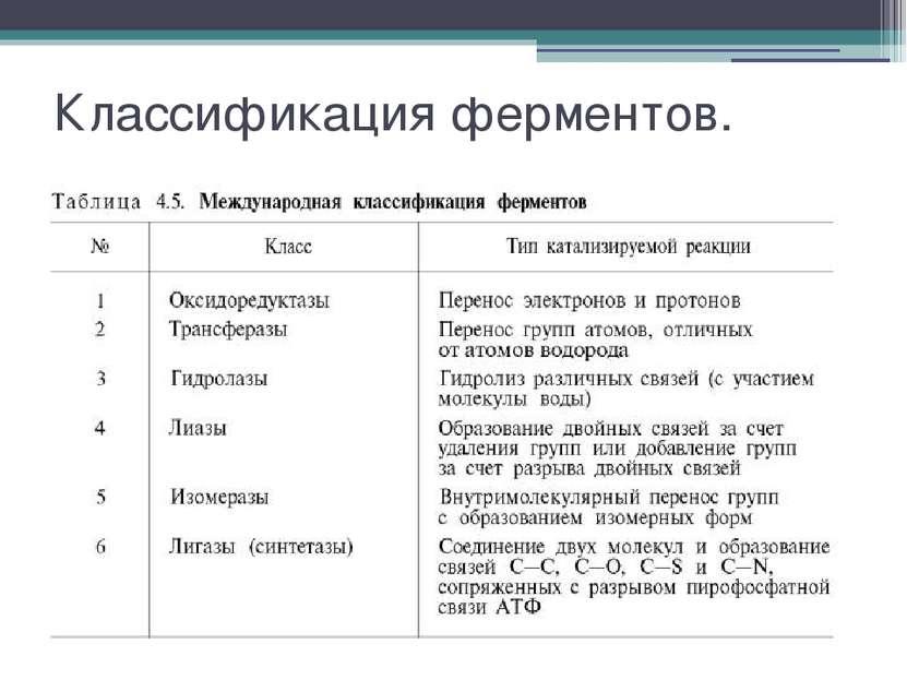 Классификация ферментов.