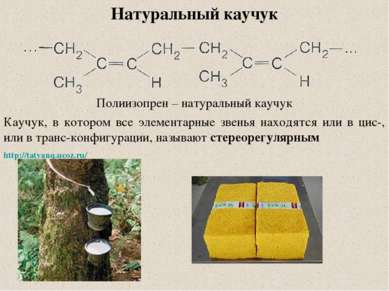 Натуральный каучук Полиизопрен – натуральный каучук Каучук, в котором все эле...