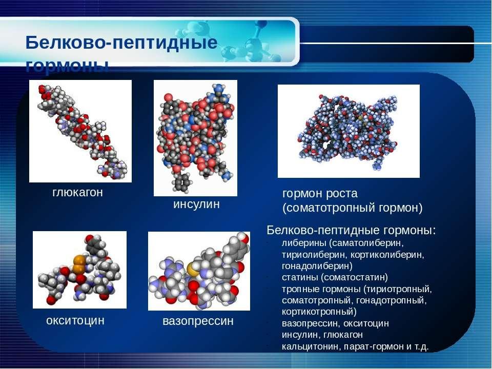 Белково-пептидные гормоны глюкагон инсулин гормон роста (соматотропный гормон...