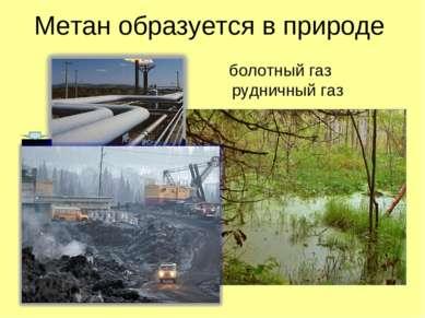 Метан образуется в природе болотный газ рудничный газ