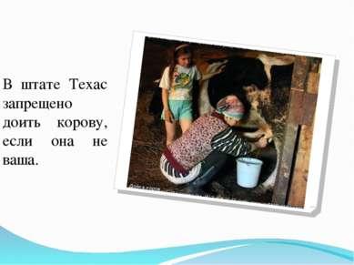 В штате Техас запрещено доить корову, если она не ваша.