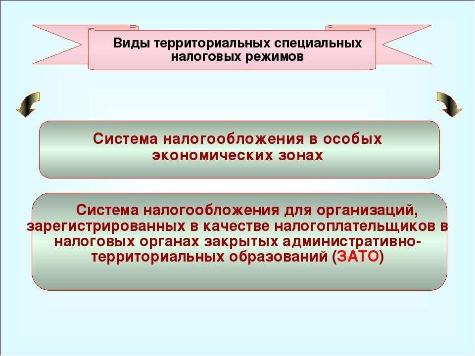 49 Система налогообложения для организаций, зарегистрированных в качестве нал...