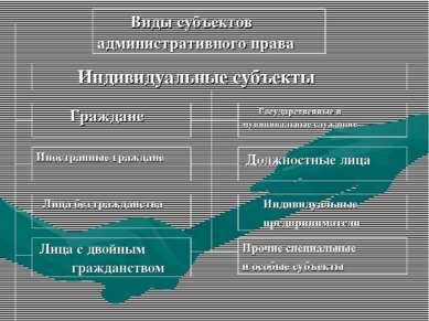 Виды субъектов административного права Индивидуальные субъекты Граждане Госуд...