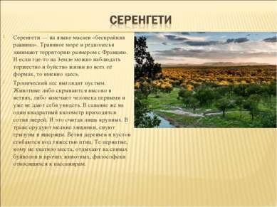 Серенгети — на языке масаев «бескрайняя равнина». Травяное море и редколесья ...