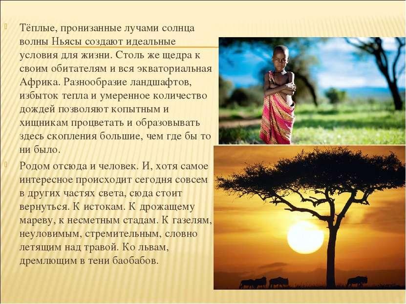 Тёплые, пронизанные лучами солнца волны Ньясы создают идеальные условия для ж...