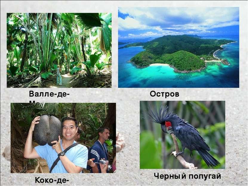 Остров Праслин Валле-де-Мэ Коко-де-мер Черный попугай