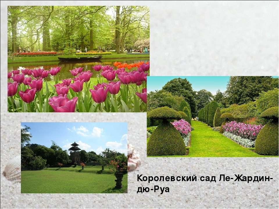 Королевский сад Ле-Жардин-дю-Руа