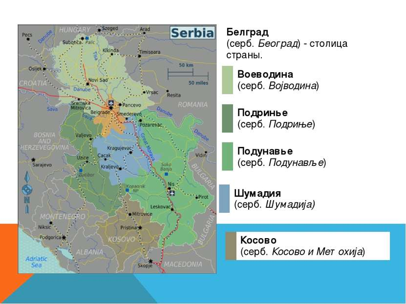 Белград (серб.Београд) -cтолицастраны. Подунавье (серб.Подунавље) Подринь...