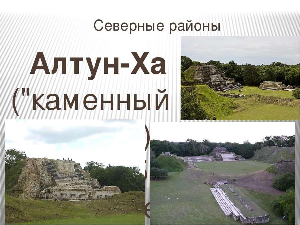 """Северные районы Алтун-Ха (""""каменный водоем"""") лежит в 55 км севернее Белиз-Сит..."""