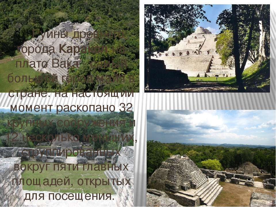 Руины древнего города Каракол на плато Вака - самый большой город майя в стра...