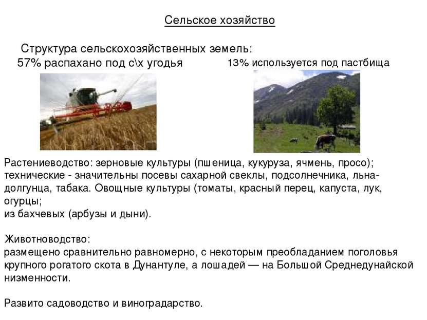 Сельское хозяйство Структура сельскохозяйственных земель: 57% распахано под с...