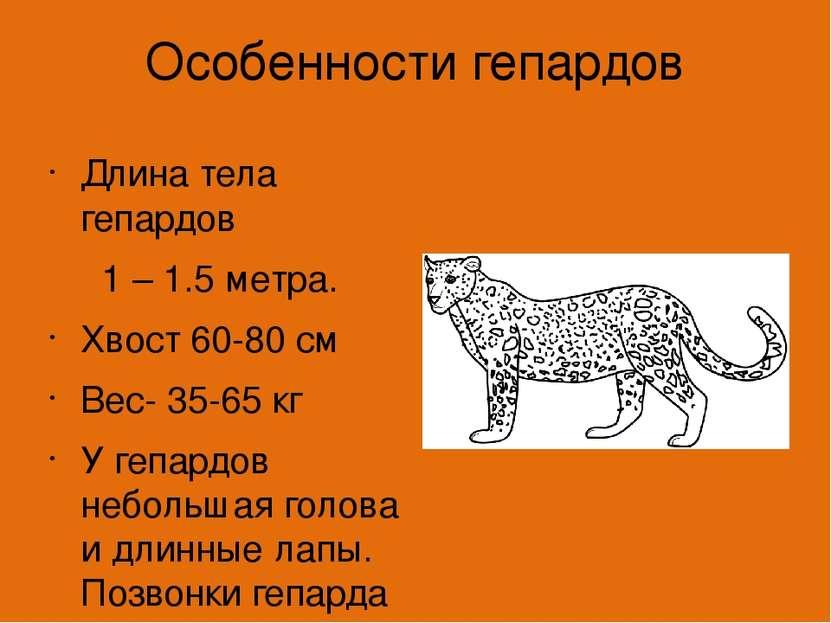 инструкция к препарату про гепарда