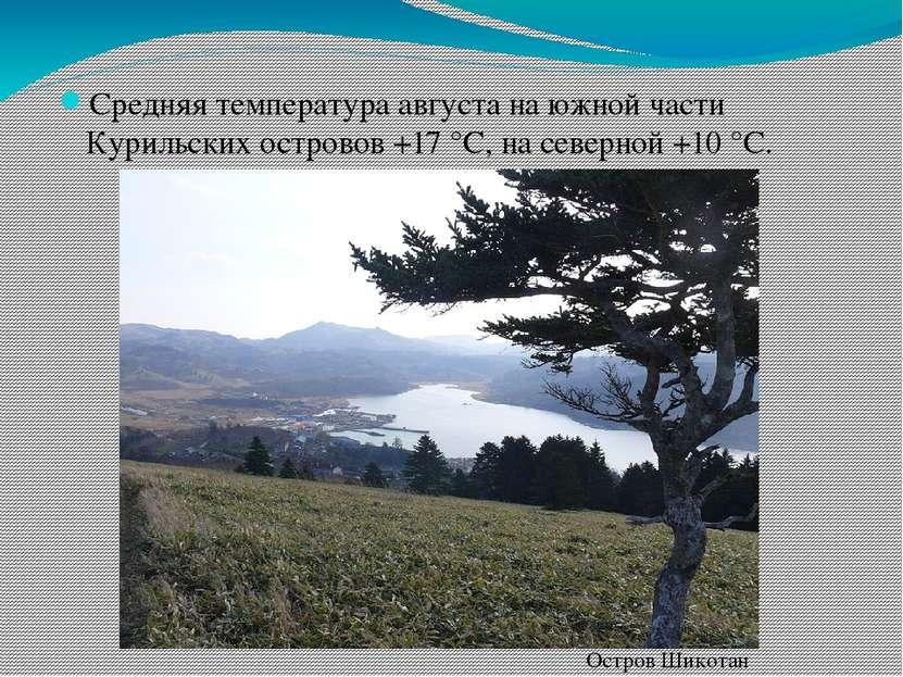 Средняя температура августа на южной части Курильских островов +17 °C, на сев...